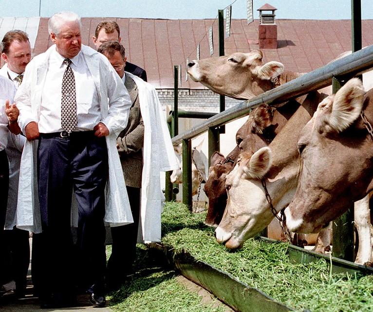 Борис Ельцин на племзаводе «Караваево»